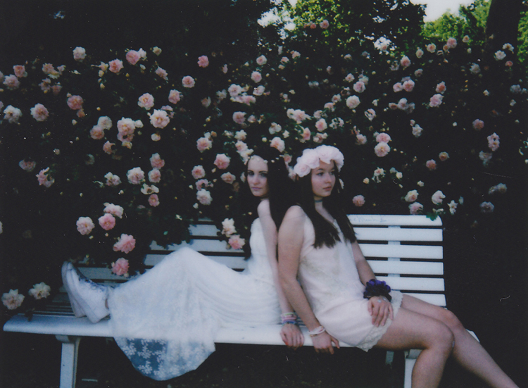 rose3 edit