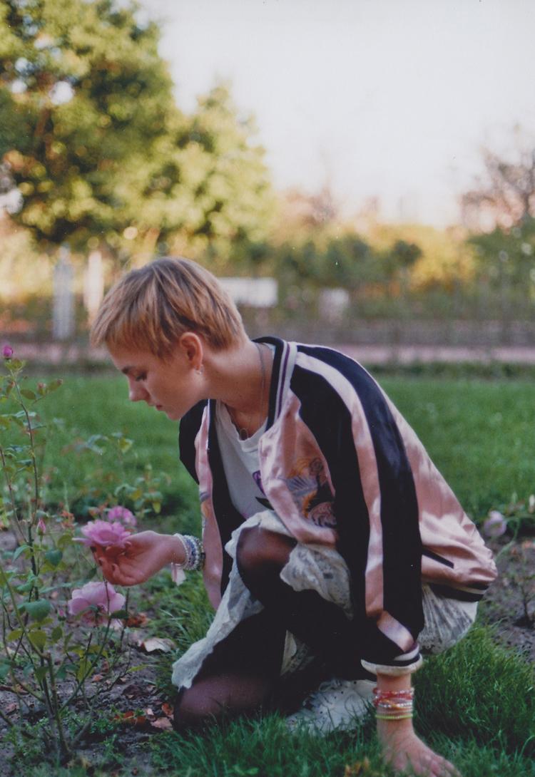 rosa38-kopie