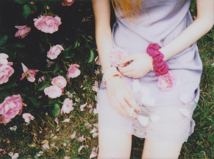 roses-details3
